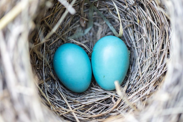 You don't have to give away your nest egg to help a loved one buy a home…